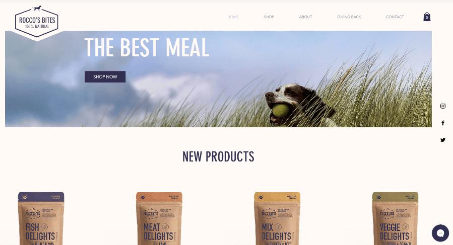Website mit Online-Shop erstellen Wix Beispieltemplate 3