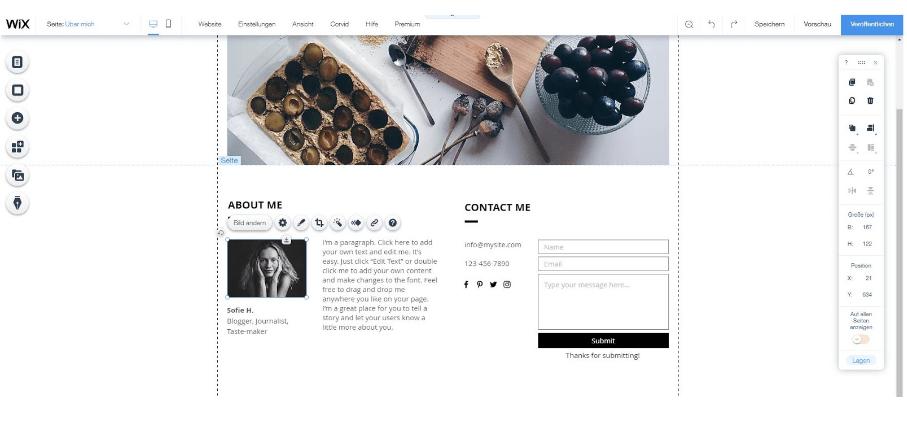 Blog erstellen mit Wix Schritt 5 - Anpassen